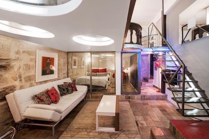 Amazing luxury Loft in Le Marais