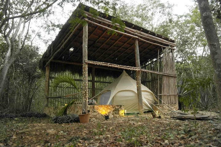 Cenote Glamping Experience