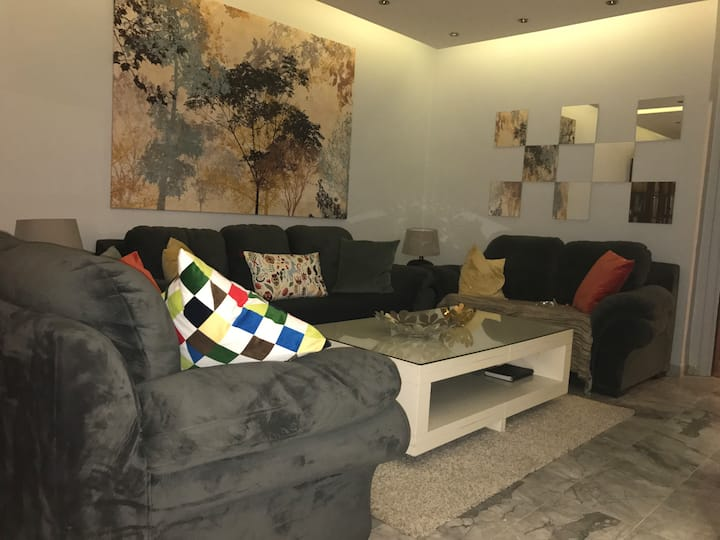 Modern and well furnished house
