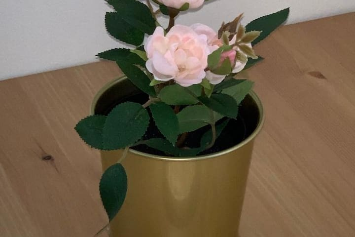 La perle Rose du Canal Saint Martin