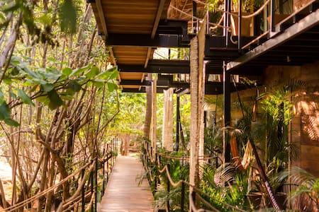 Hotel Noga - Luxury treehouse