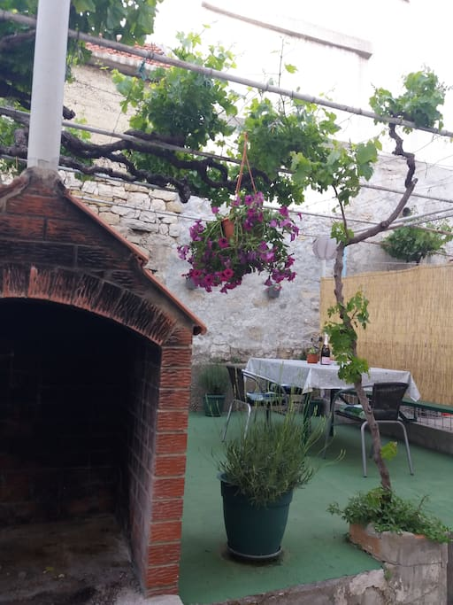 Our terrace will be even greener while you arrive