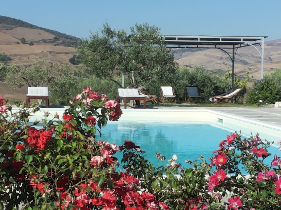 Sicilia b b casa con piscina fagiano appartamenti in - Residence con piscina in sicilia ...