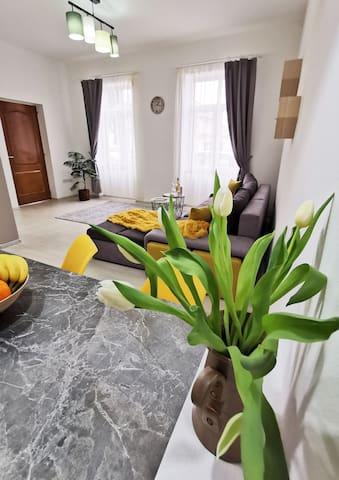 Transylvania Mediasch Apartments II