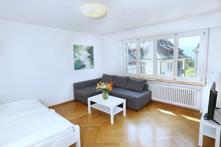 City center / University - 2.5 rooms, 1 BR, 62 sqm