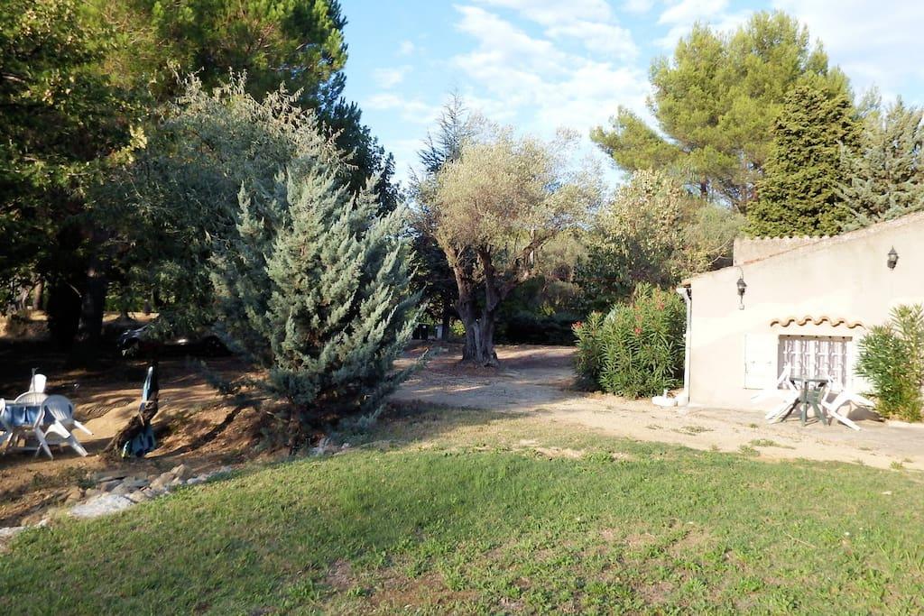 Vue Appartement du jardin