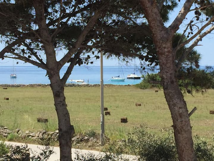 Punta Lunga - Villa in pine grove