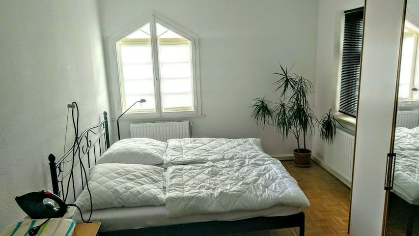 1 room, centrally located near the Maschsee. - Hannover - Leilighet