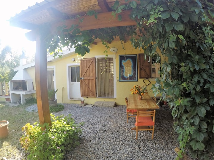 "Cosy Holiday Home ""Casa Ulivo"" with Terrace & Mountain View; Parking Available"