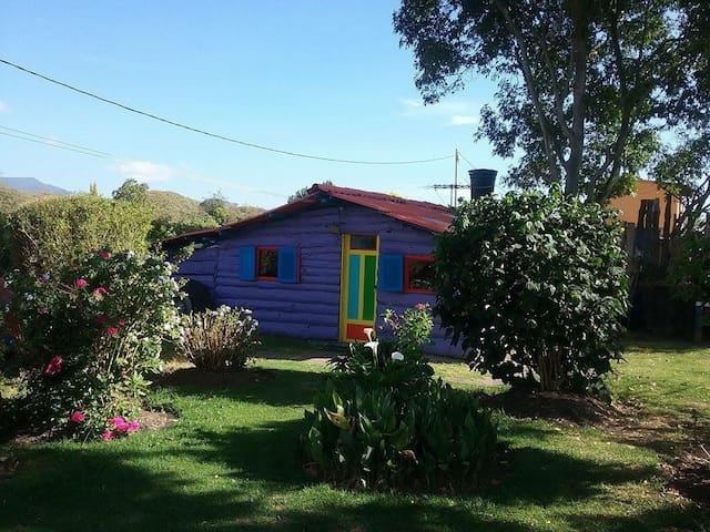 Coloquial, Cozzy Rural Cottage