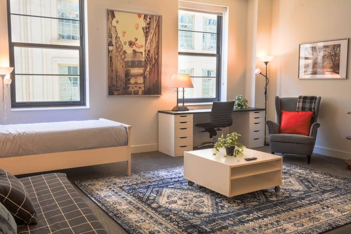New Classy 1 BR Apt close to convention center