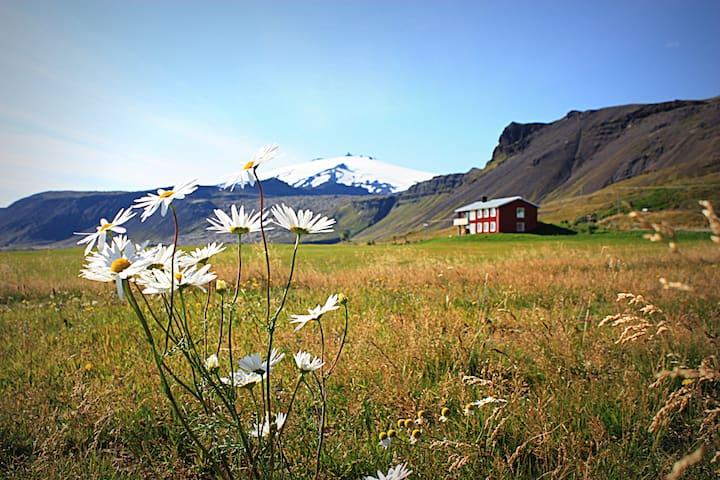 Stóri-Kambur farm, 356 Snæfellsbær, West Iceland. - Stóri-Kambur - Apartment