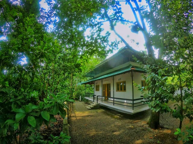 Charming 2BR Plantation Guesthouse - 3
