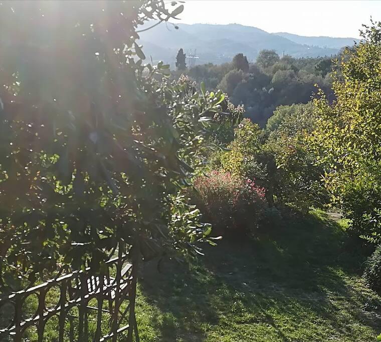 il giardino in ottobre...
