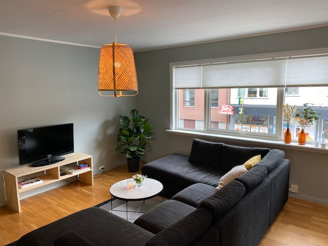 Central nordic modern 3 BR / 84m2 apartment