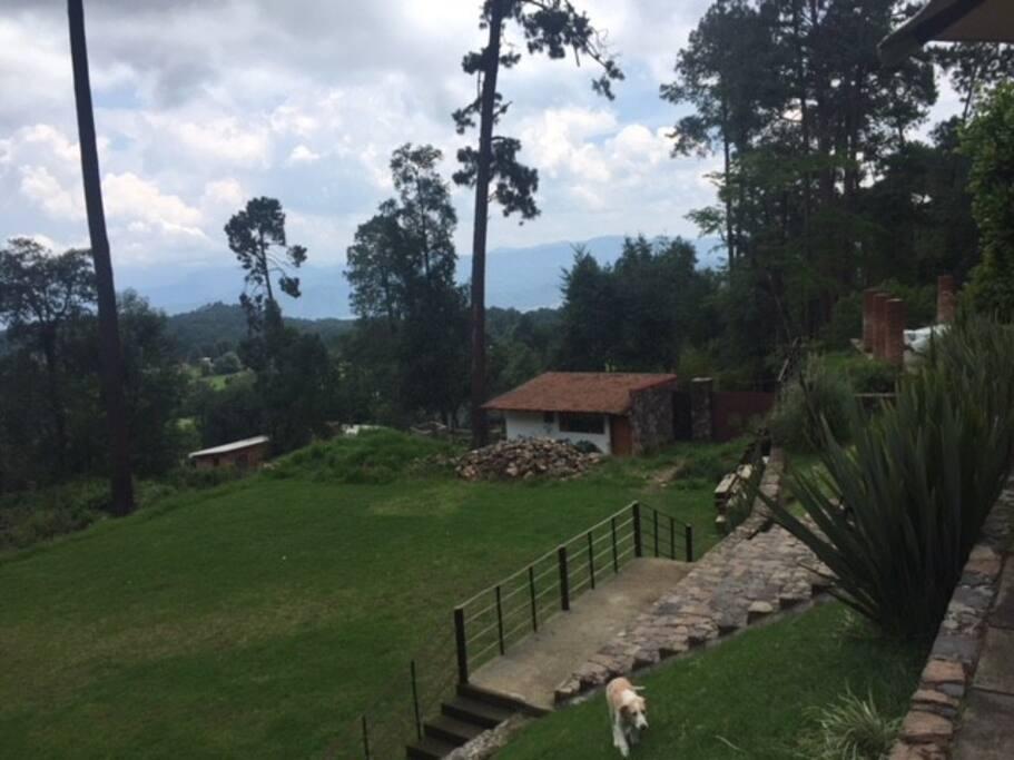 Jardin casa 1,000 mt2