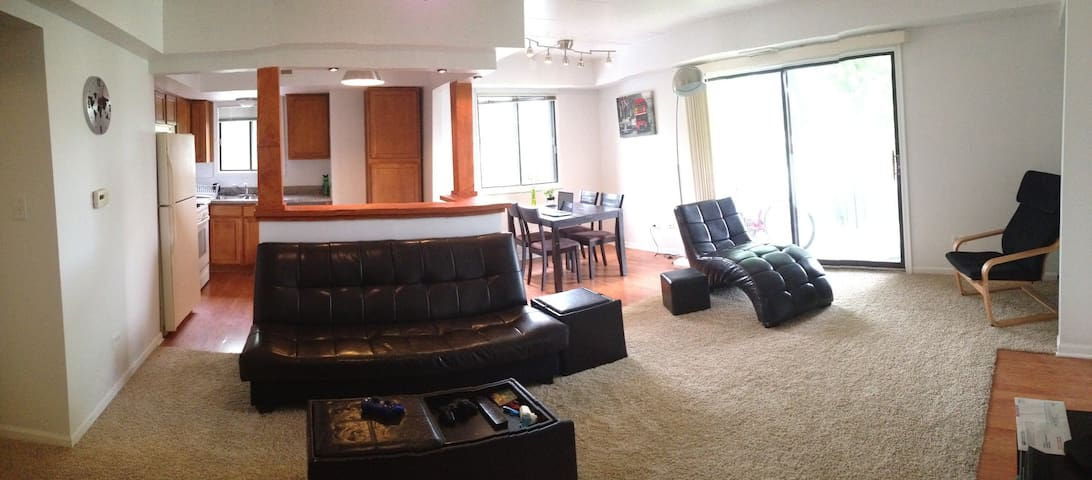 QUIET ROOM IN TINLEY PARK - Tinley Park - Apartment