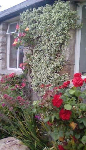 Ty'r Ardd  (Garden Cottage)