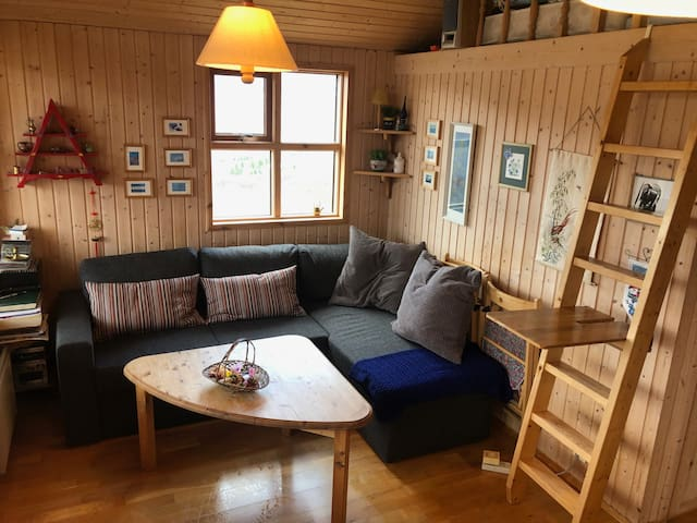 Cosy living room with a convertible sofa / bed