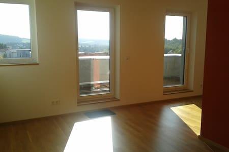 Ruhig, neu, hell und groß - Appartment in Uni-Nähe - Trier - Pis