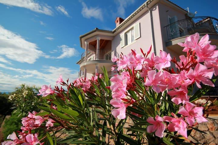 Villa Viola Apartment Maslina - Linardići - Leilighet