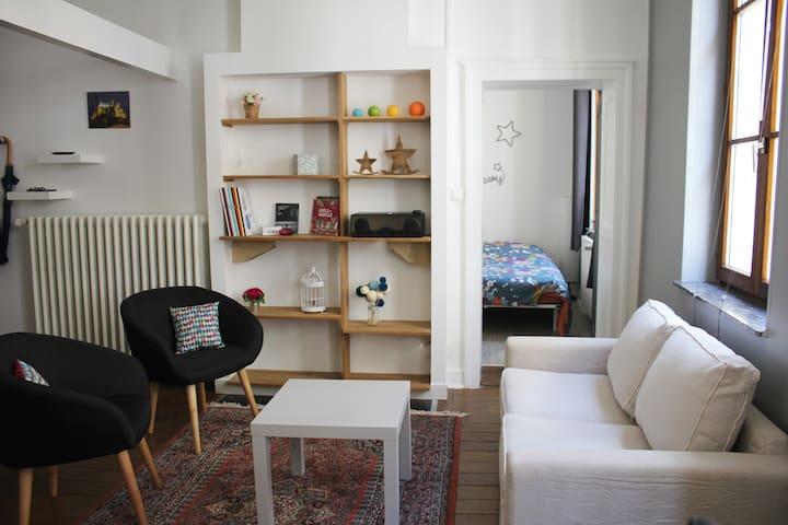 Appartement F1 bis, tout équipé, hyper-centre - メス - アパート