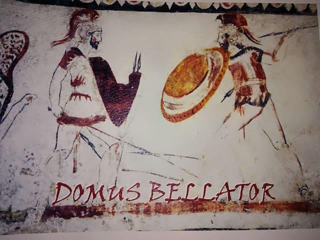 Domus Bellator
