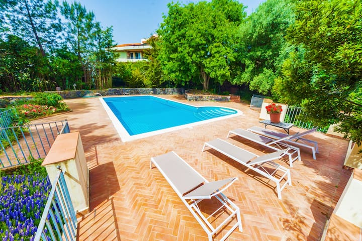 Beautiful villa with pool, immersed in a park