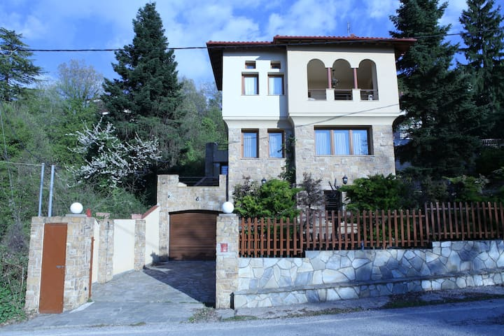 MOUNTAIN VILLA - Thessaloniki - Hus