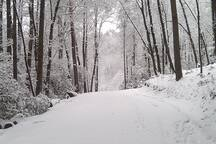 """Private road for winter wonderland walks, check forecast, bring a book there is a big fireplace and 60"""" tv."""