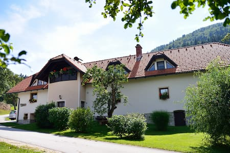 Organic Tourist Farm Ravnjak - Sele - Appartement