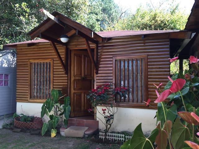 Outdoor cabin in garden - Santa Lucía - Haus