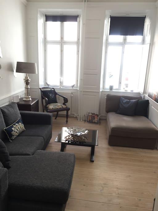 stue med sovesofa til en person / livingroom with sofabed for one