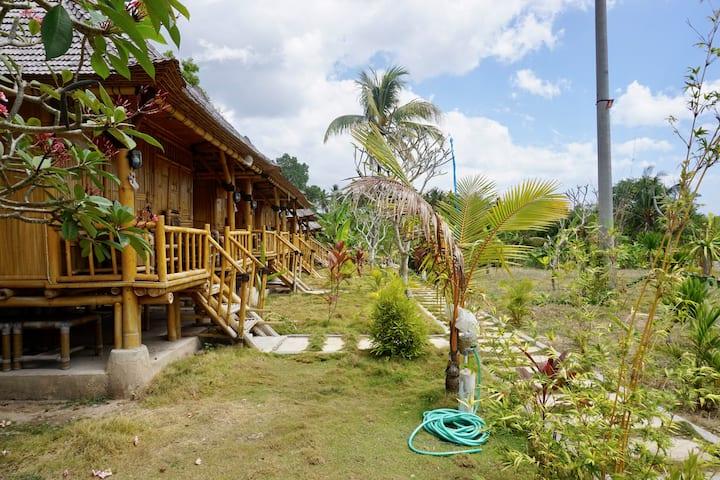 Green Bamboo - on the uphill of Nusa Penida Island