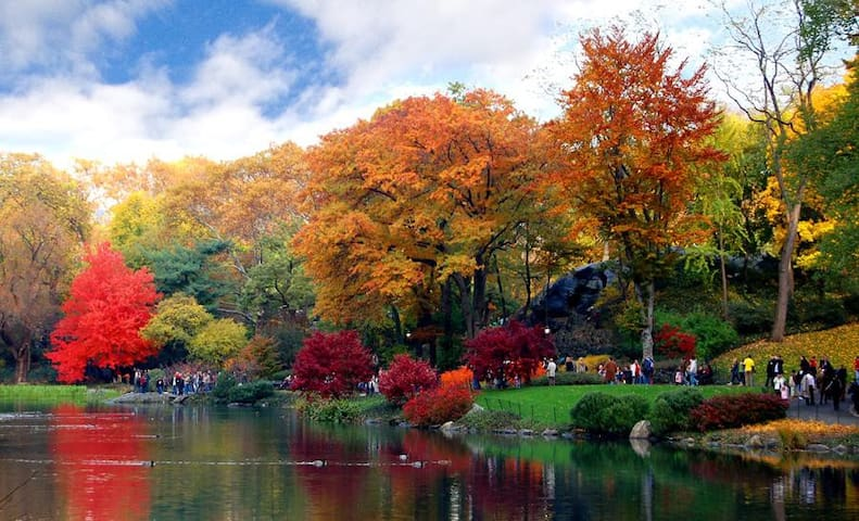 Central Park Getaway