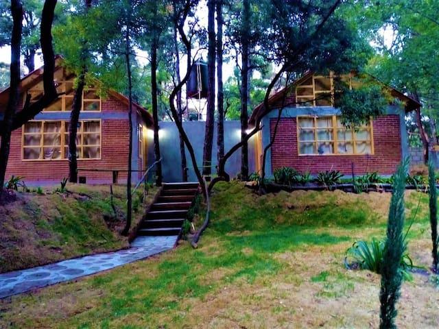 Acacia cabaña Roble