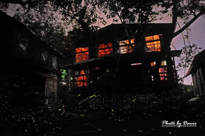 房子夜間外景