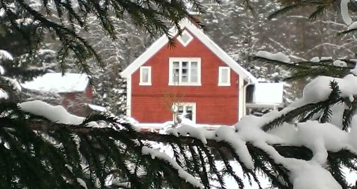 Swedish cottage in the wild and fascinating nature