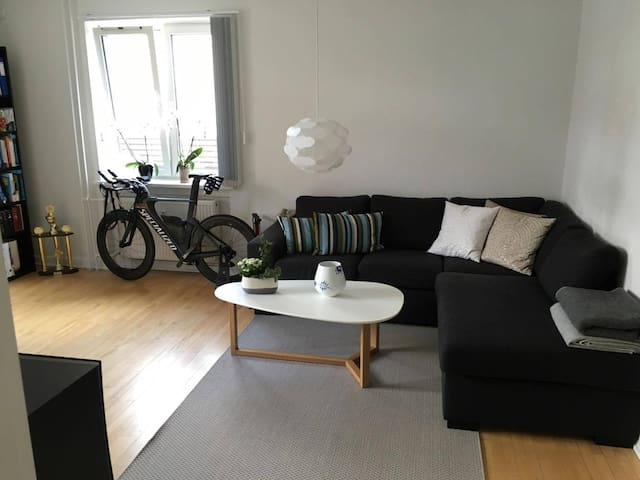 Luxury apartment close to the heart of Odense - Odense - Wohnung