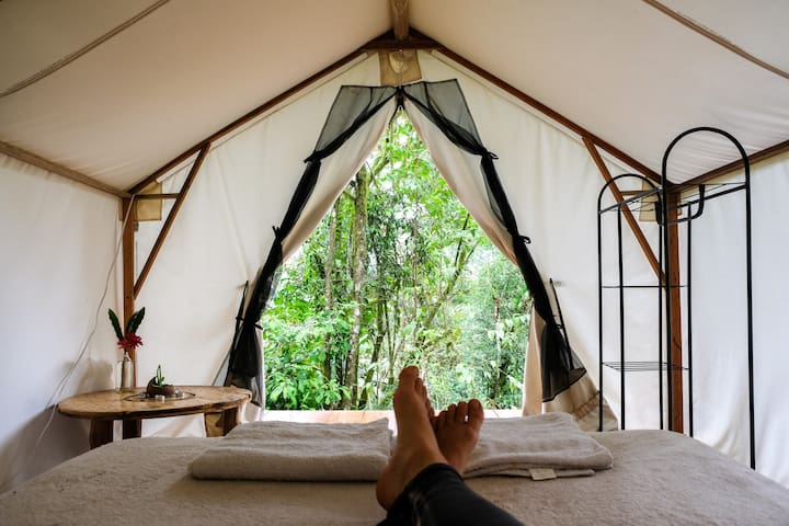 Eco Lodge Glamping Tent with Jungle View