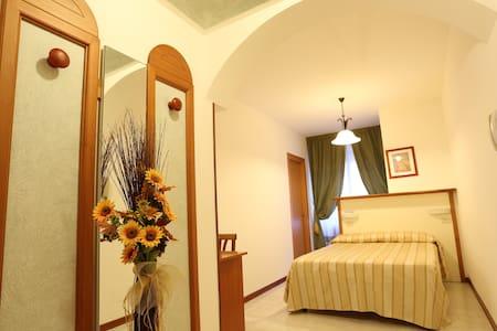 Hotel Vignola Assisi - matrimoniale uso singola - Santa Maria degli Angeli - Bed & Breakfast