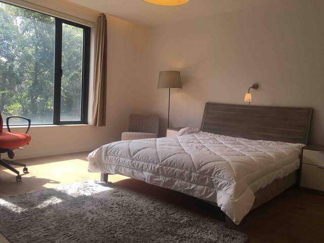 超大幅度的卧室 阳光明媚