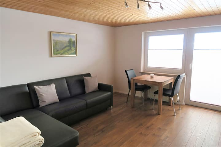 Haus Fritz, (Dachsberg), Ferienwohnung, 50qm, 1 Schlafzimmer, 1 Wohnzimmer Balkon und Terrasse, max. 2 Personen