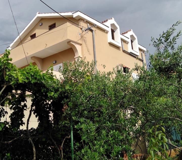 Apartment Radas