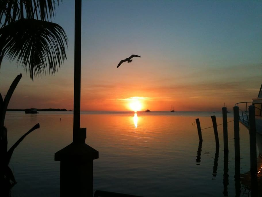 Sunset or Sunrise!