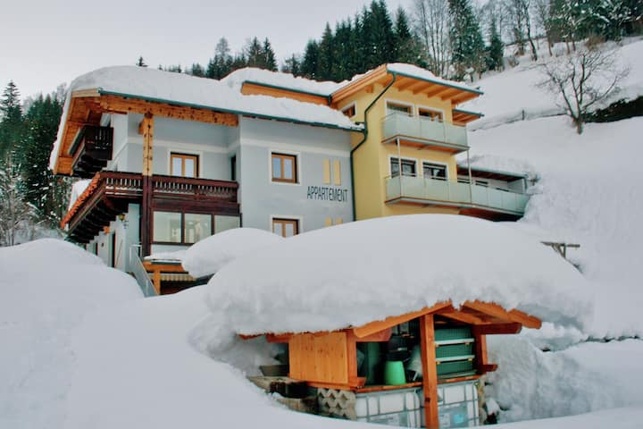 Apartment in Zell am See with Ski-Storage, Parking & Balcony
