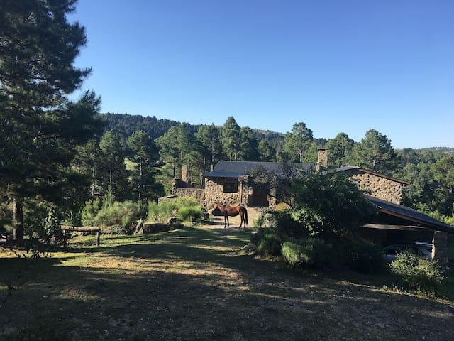 Casa en las sierras entre pinares, al lado del río - La Cumbrecita