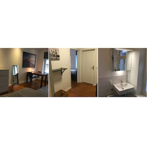Cosy, just renovated apartment in the city center