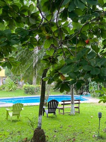 Apartamento rodeado de Jardín Tropical y Piscina