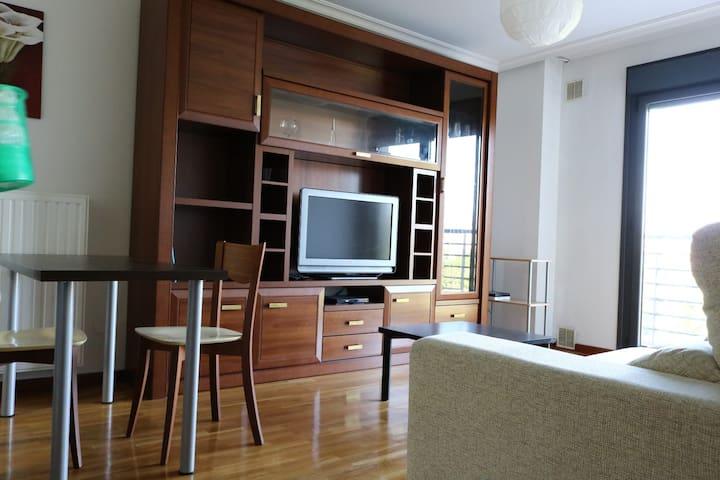 La Vega, céntrico,Wifi,TV cable,garaje incluido